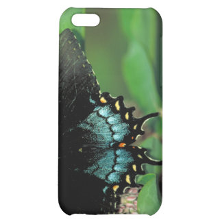 Spicebush swallowtail Buttterfly   Common milkweed Cover For iPhone 5C