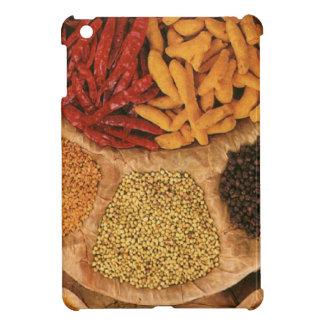 Spices iPad Mini Cover