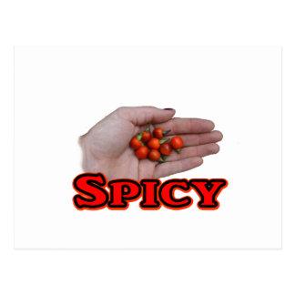 Spicy Cascabel Hot Pepper Design Postcard