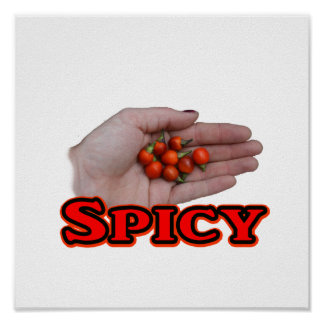 Spicy Cascabel Hot Pepper Design Posters