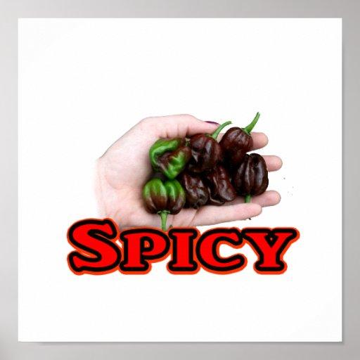 Spicy Chocolate habanero Hot Pepper Design Poster
