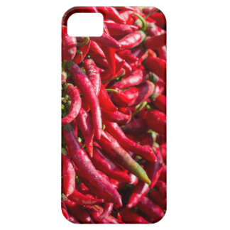 Spicy Red Chili In The Town Of Kalocsa Case For The iPhone 5