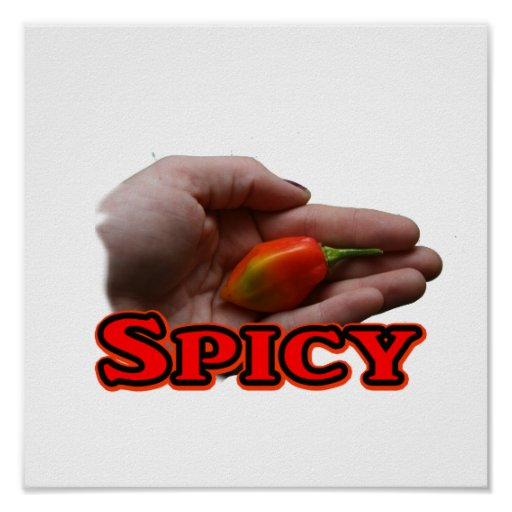 Spicy Single Hand Habanero Hot Pepper Design Posters
