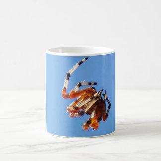 Spider 100_1305 coffee mugs