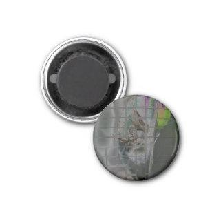 Spider #2 3 cm round magnet
