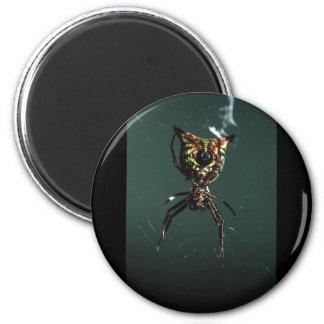 spider 6 cm round magnet