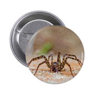 spider a 6 cm round badge