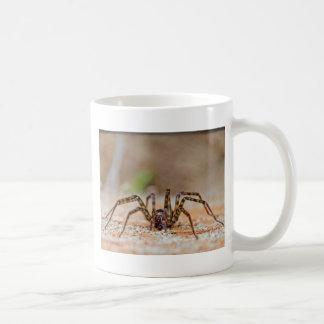 spider a basic white mug