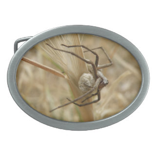 Spider and Egg Sac Belt Buckle