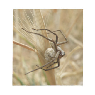 Spider and Egg Sac Notepad