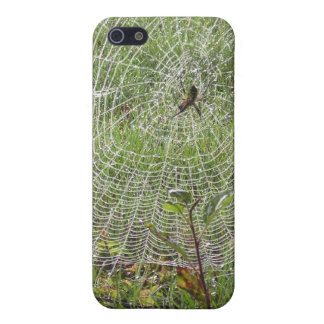 spider and web case for iPhone 5
