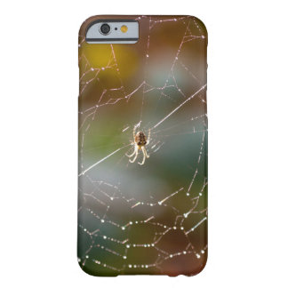 Spider and web photograph phone case