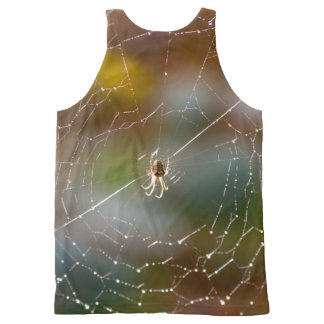 Spider and web photograph top