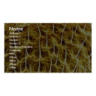 Spider - back business cards