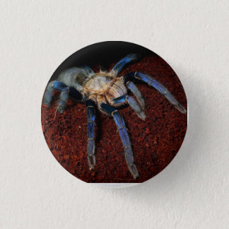 Spider badge