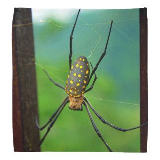 Spider Bandana