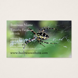 Spider Business Cards