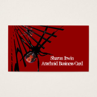 Spider Business Cards Template
