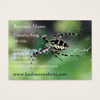 Spider Chubby Business Cards