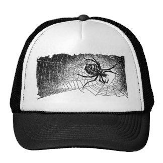 spider-clip-art-6 mesh hats