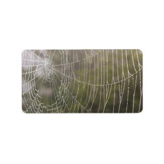 Spider Cobweb Label