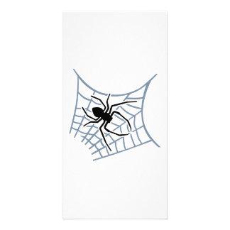 Spider cobweb photo card