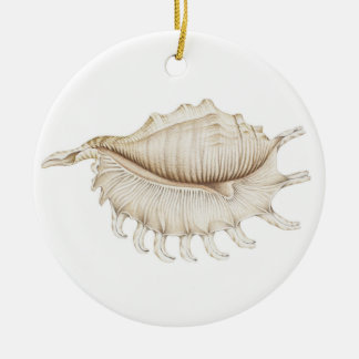 Spider Conch Shell Circle Decoration/Ornament Christmas Ornament