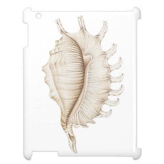 Spider Conch Shell in Coloured Pencil iPad Case