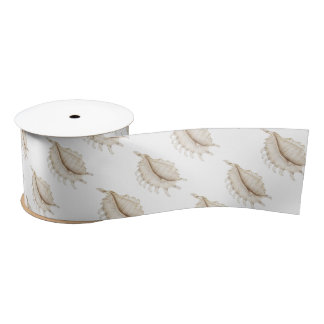 Spider Conch Shell in Coloured Pencil Ribbon Satin Ribbon
