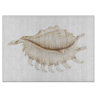 Spider Conch Shell Pencil Chopping Board