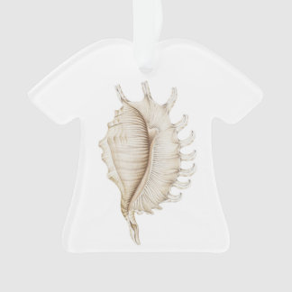Spider Conch Shell T Shirt Decoration/Ornament Ornament