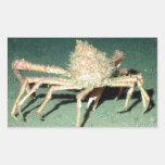 Spider Crab Rectangular Sticker