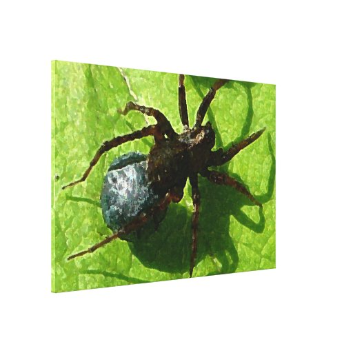 Spider Crawling on Leaf Gallery Wrapped Canvas