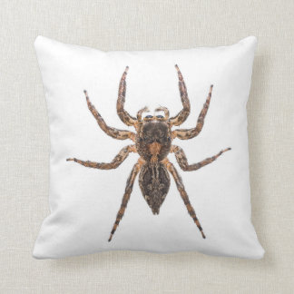 Spider Cushion - Female