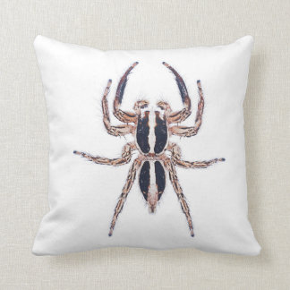 Spider Cushion - Male