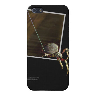 Spider Escape Cover For iPhone 5