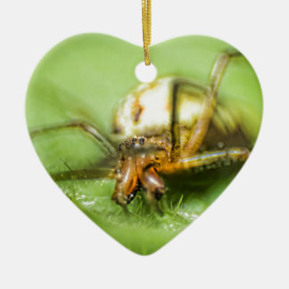 Spider Eyeeessss Christmas Ornament