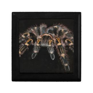 Spider Gift Box