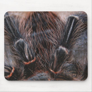 spider hair mouse mat