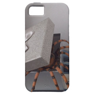 Spider in gift box iPhone 5 case