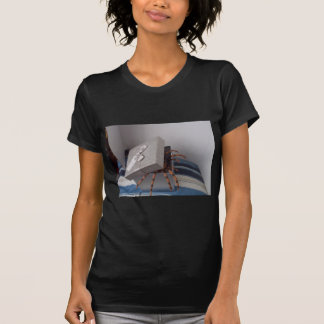 Spider in gift box t shirt