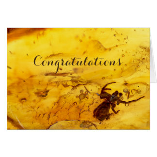 Spider inside baltic amber stone blank card