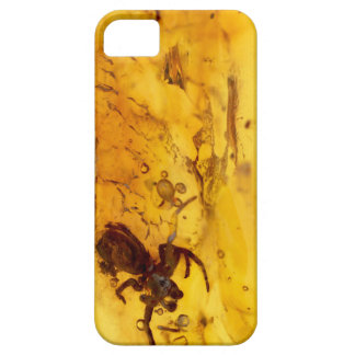Spider inside baltic amber stone iPhone 5 case