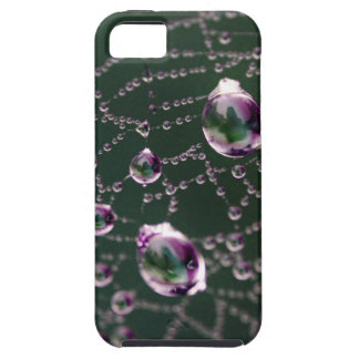 Spider Jewels iPhone 5 Cover
