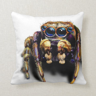 Spider - Live the Wild Life / Pillow