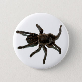 Spider lovers 6 cm round badge