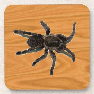 Spider lovers coaster