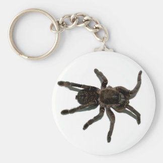 Spider lovers key ring