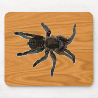 Spider lovers mouse mat