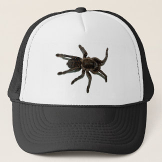 Spider lovers trucker hat